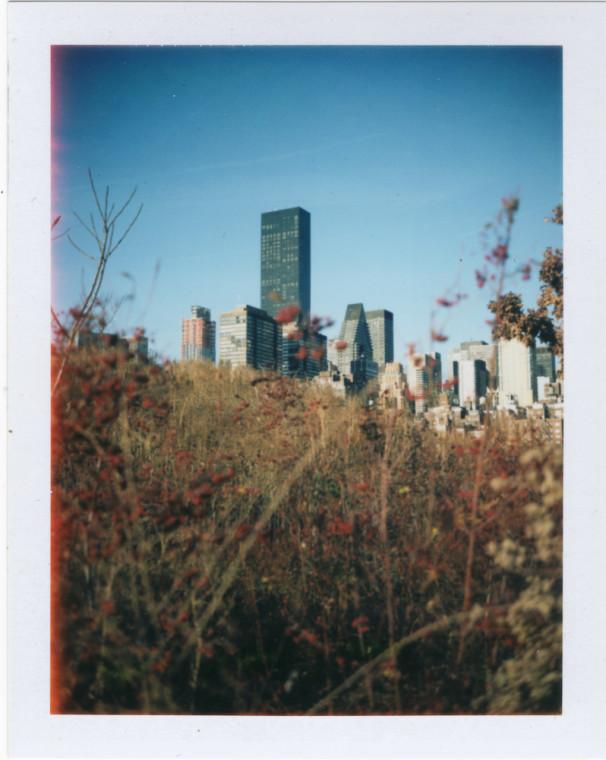 Polaroid_07-14 33