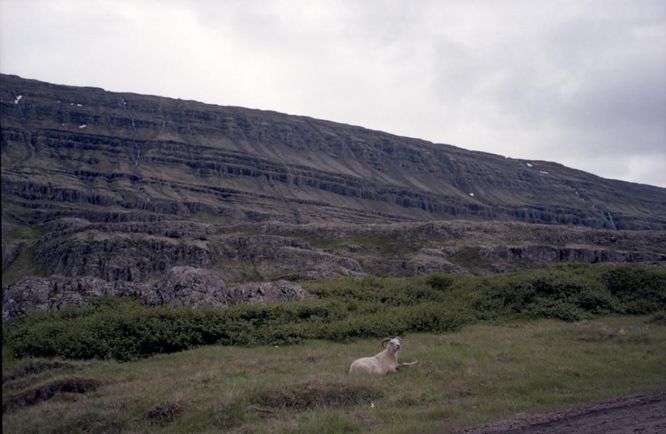 m_Iceland091