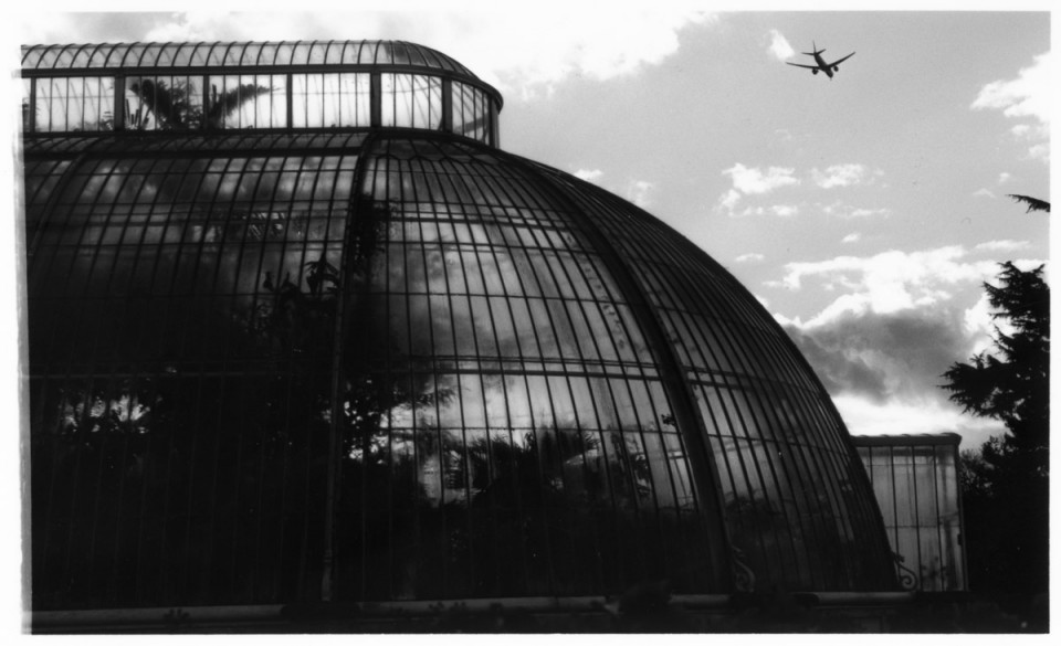 kew-gardens-film-photo-1
