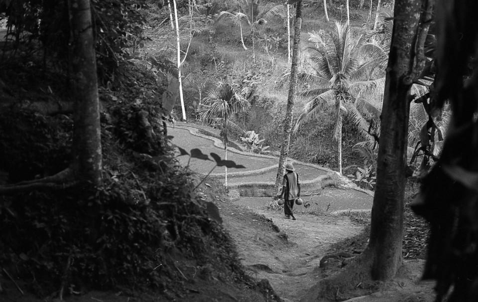 tegalalang-film-photo