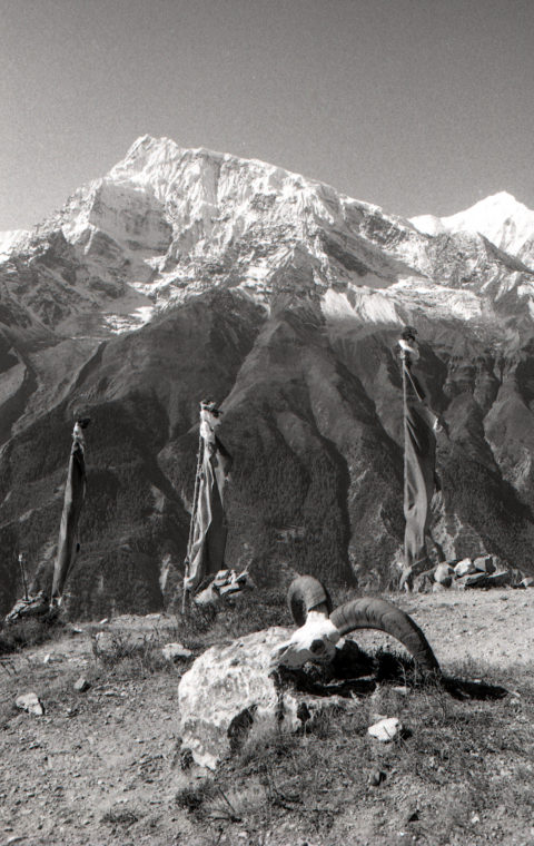 Ghyaru-himalayas-film-photo